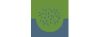 Tianguis orgánico Bosque de Agua